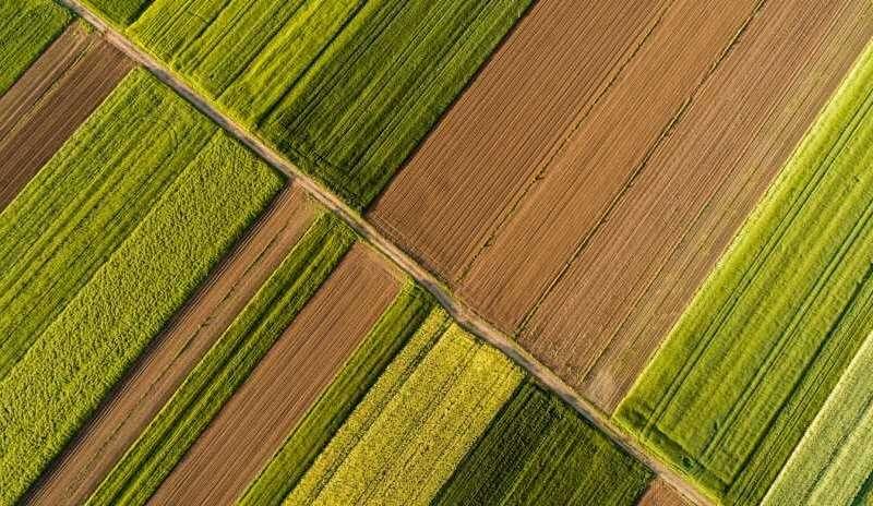 رئیس سازمان جهادکشاورزی آذربایجانشرقی :  ۲۸۲ میلیون دلار صادرات کشاورزی در ۹ ماهه امسال از گمرکات استان