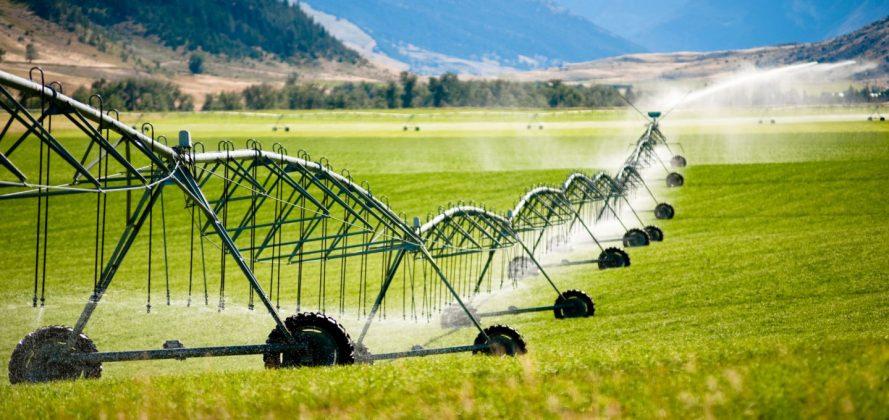 کشاورزی سبزوار