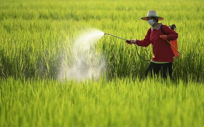 چند توصیه به کشاورزان و دامداران جهت پیشگیری از کرونا